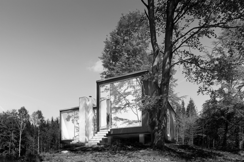 The Forester´s House
